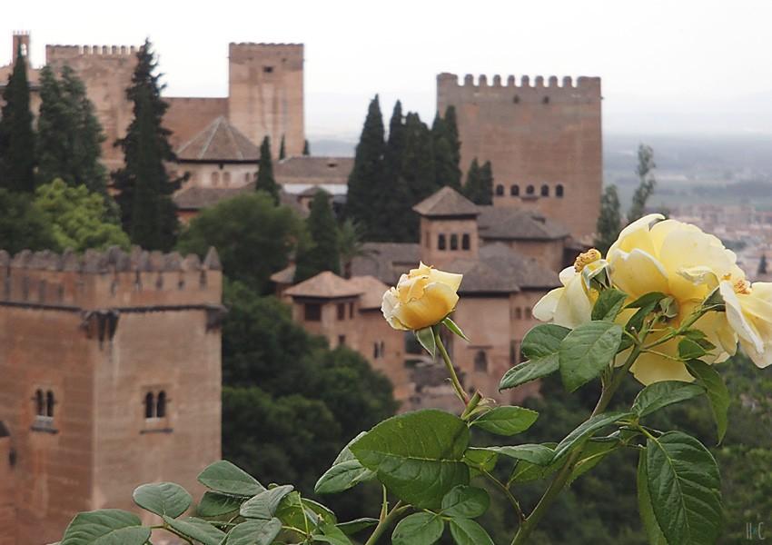 105-alhambra-garden-exterior-05