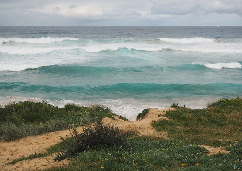 118-sydney-northern-beaches-freshwater-waves2