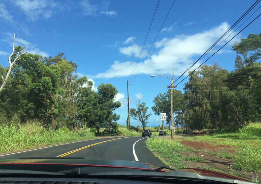 119-northshore-roadtrip-road